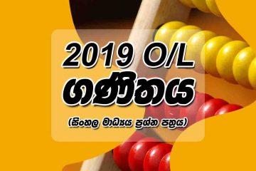 2019 O/L Maths Past Paper Sinhala Medium
