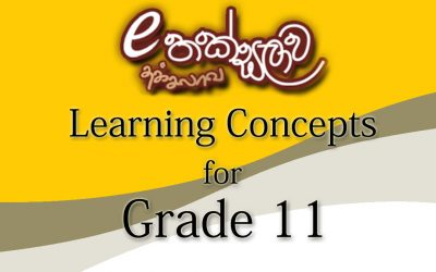 e-thaksalawa-Grade-11-learning-concepts